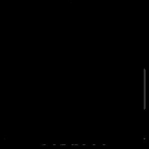 Bushido-Logo